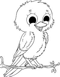 Coloring Book Pages Birds Baby Bird