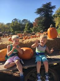 Bishops Pumpkin Farm Wheatland California by Holiday Archives Okayest Moms