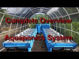 Aquaponics BackYard System Renogy Solar System Off The Grid