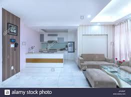 modern eingerichtetes apartment mit wohnzimmer esszimmer