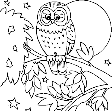 Owl Coloring Pages For Free Printable 600x591