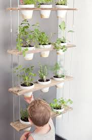 A DIY Plant Hanger Is An Excellent Way To Bring Fresh Herbs Into Your Home