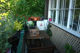How To Grow An Edible Balcony Garden | Wandering Spice Garden Design North Facing Interior With Large Backyard Ideas Grotto Designs Victiannorthfacinggarden12 Ldon Evans St Nash Ghersinich One Of The Best Ways To Add Value Your Home Is Diy Images About Small On Pinterest Gardens 9 20x30 House Plans Bides 30 X 40 Plan East Duplex Door Amanda Patton Modern Cottage Hampshire Gallery Victorian North Facing Garden Catherine Greening Our Life