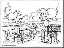 Farm Animal Colouring Pages To Print Coloring For Toddlers Zoo Baby Animals Adults