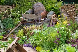 Rustic Farm Tractor And Herb Garden