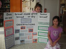 Charlies 4th Grade Science Project