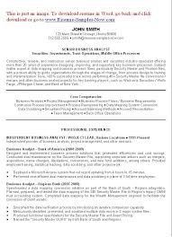 Business Analyst Resume Example Intended For Systems Template