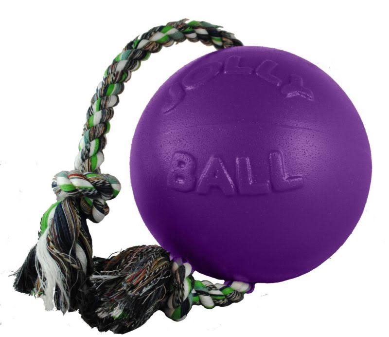 Jolly Pets Romp-n-Roll Ball Dog Toy - Purple, 6""