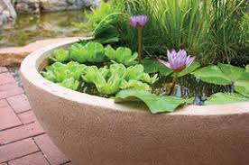 Aquascape Patio Pond 40 by Pond Blog Gordon U0027s Pond Utopia
