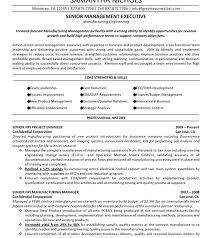 Project Management Resume Objective For Manager Template Career Technical Samples Construction
