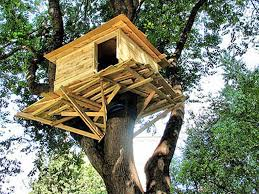 Appealing Treehouse Designs For Kids : Simple Backyard Treehouse ... Best 25 Treehouse Kids Ideas On Pinterest Kids Treehouse Designs And Youtube Play Houses Forts For Hip Cubby House Outdoor Backyard Wooden Houses 371 Best Extreme Playhouses Images Playhouse Registration Simple Amazoncom Kidkraft Toys Games Outside Play In This Fun Fort With Bridge Rockwall Decoration Ideas Adorable Brown Castle Style This Kidfriendly Backyard Renovation Took Only 3 Weeks To Fabulous Tree Design Which Is Completed With Unique Yard Games