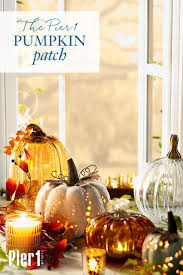 Papas Pumpkin Patch Kansas by 1102 Best Fall Decor Images On Pinterest Fall Thanksgiving