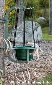 how to make a deer antler trap whitetail hunting