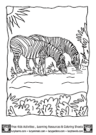 Grasslands Biome Colouring Pages