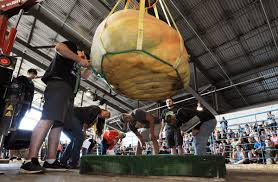 Largest Pumpkin Ever Grown 2015 by Check Out The 1 469 Pound Pumpkin That Just Broke The Alaska State