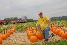 Pumpkin Picking Ct Easton by Pumpkins Season Begins At Jones Family Farm Shelton Herald