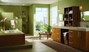 Delta Dryden Faucet Stainless by Delta Faucets Bathroom With Green Walls Delta Faucets Bathroom