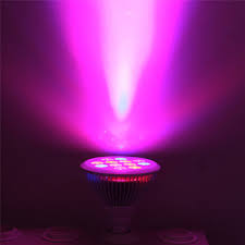 led grow light blue bulb e27 bulbs home depot greenhouse for