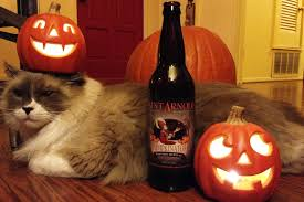 St Arnold Pumpkinator 2014 by Stout Beer Parrot