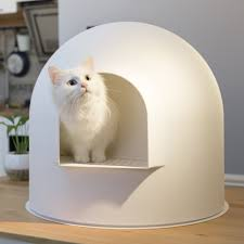 litières pour chat et chaton bacs et maisons de toilette wanimo