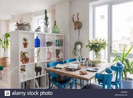 Blue Painted Chairs At Scaffold Board Dining Table With Shelving As Room Divider