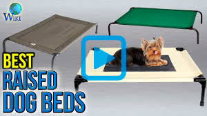 Top Rated Orthopedic Dog Beds by Top 10 Raised Dog Beds Of 2017 Video Review