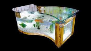 Aquarium Fish Idea 2017 - Creative Home Design Fish Tank And ... 60 Gallon Marine Fish Tank Aquarium Design Aquariums And Lovable Cool Tanks For Bedrooms And Also Unique Ideas Your In Home 1000 Rousing Decoration Channel Designsfor Charm Designs Edepremcom As Wells Uncategories Homes Kitchen Island Tanks Designs In Homes Design Feng Shui Living Room Peenmediacom Ushaped Divider Ocean State Aquatics 40 2017 Creative Interior Wastafel