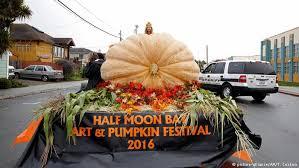 Pumpkin Fest Half Moon Bay by Biggest Pumpkin In Germany Crowned At Ludwigsburg Pumpkin Festival