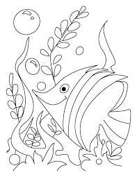 Good Coloring Pages Betta Fish Detail Description