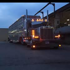 Midwest Livestock Haulers - Home | Facebook The Trucking Industrys Driver Shortage And Its Implications R J Trevarthen Stithians Friendly Driver Who Has Come Up Flickr Marbert Transport Sapp Bros Fremont Ne Cattle Pot Heaven Experienced Hr Truck Required Jobs Australia Job Posting Dicated Livestock Bull Hauler 11 Reasons You Should Become A Ntara Transportation What Are We Gonna Do With Them Hauling Industry To Texas Youtube On The Road In South Dakota Pt 6