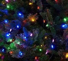 Qvc Christmas Tree Recall by Ed On Air Santa U0027s Best 9 U0027 Bristol Pine Mix Tree By Ellen Degeneres