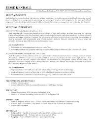 29 Fresh Auditor Resume Example