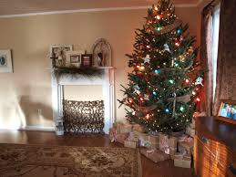 simple rustic tree mix small white lights with big
