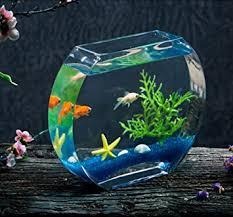 jiangu kreatives fischtank glasfischtank oblate fischtank