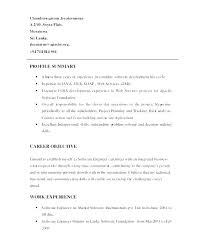 Professional Summary Examples For Resumes Example Resume Profile Samples Of Great Executive