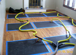Hardwood Floor Cupping And Crowning by Hardwood Floor Water Emergency Drying And Hardwood Water Damage