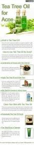 Aspirin For Christmas Tree Life by 25 Best Tea Tree Ideas On Pinterest Tea Tree Oil Uses