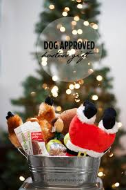 Homemade Christmas Tree Preservative Aspirin by 29 Best Pets Images On Pinterest Diy Dog Toys Animals And Dog