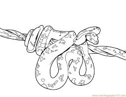 Coloring Pages Snake Reptile Free Printable Page