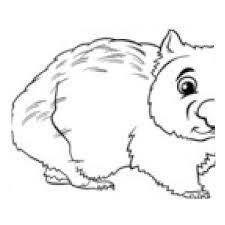 Tapis De Souris Animaux Wombat Livre De Coloriage De Bande