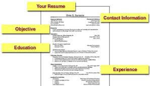 How To Create The Perfect Resume 11 Build For Medical Pharma Jobs