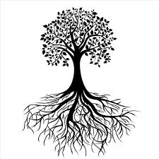 clipart tree drawing easy with roots pencil and in color best oak silhouette clipartion memorial