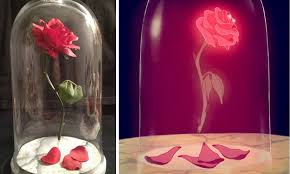 Beauty And The Beast Floating Rose