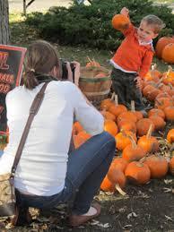 Pumpkin Farms In Channahon Illinois by Pumpkin Patches U0026 Farms Near Chicago Illinois