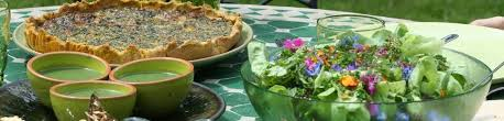 cuisine plantes sauvages stages cuisine plantes sauvages stages cuisine plantes sauvages 02