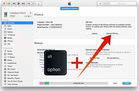 How to Restore iPhone Without Updating The Mac Insider