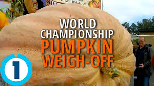 Heaviest Pumpkin Ever by The World Championship U0027s Largest Pumpkin 2016 Youtube