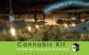 kit chambre de culture cannabis cannabis kit lancement cannabis kit