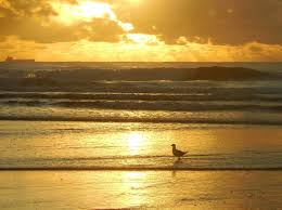100 Currimundi Beach Queensland Sunshine Coast Queensland