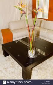 bambus auf einem tisch im wohnzimmer stockfotografie alamy